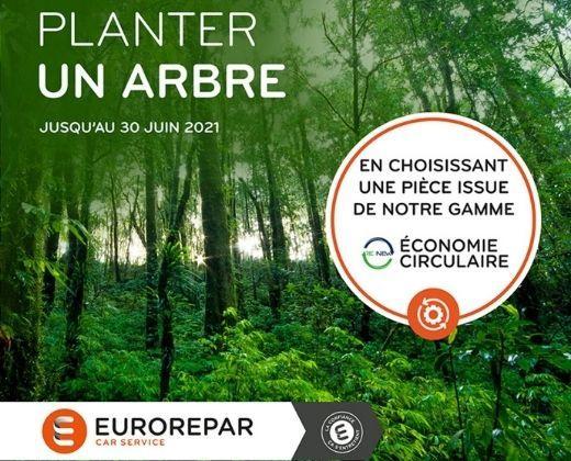 Opération planter un arbre pour tout remplacement de pièces auto avec Eurorepar !
