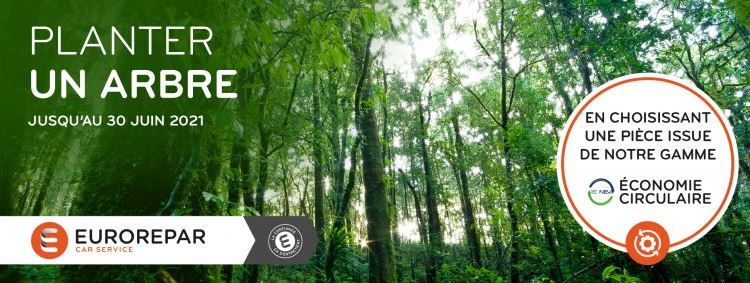 Opération promo Planter un arbre Eurorepar